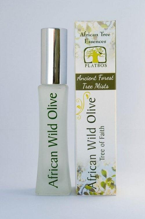 African Wild Olive Tree Mist ~ Tree of Faith